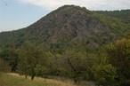 Národní přírodní rezervace Týřov (Česko)