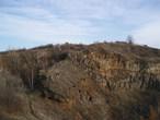 Přírodní památka Vinařická hora (Kladno-oblast, Česko)