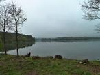 Musík, rybník (Česko)