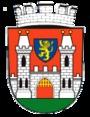 Kosmonosy (Česko)