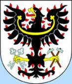 Petrovice I (Česko)