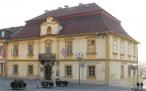 Radnice (Zdice, Česko)