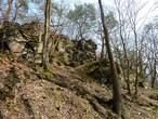 Národní přírodní rezervace Vůznice (Česko)