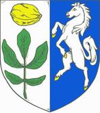Ořech (Česko)