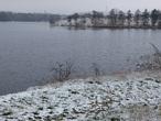 Strž, rybník (Česko)