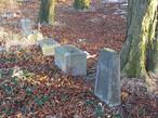 Židovský hřbitov (Strančice, Česko)