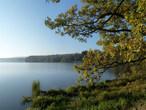 Padrťské rybníky (Česko)