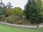Židovský hřbitov (Veselice, Česko)