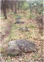 Kamenné řady u Kounova (Česko)