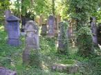 Židovský hřbitov (Hostouň, Česko)