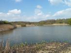 Přírodní památka Na Novém rybníce (Rakovník-oblast, Česko)